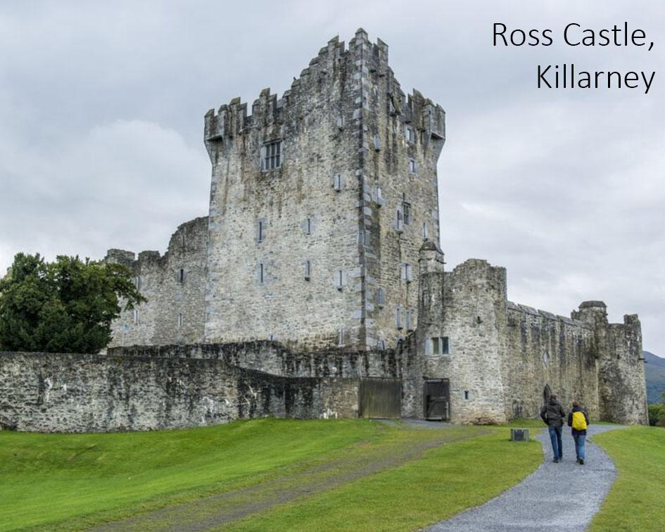 Castles in Ireland - Ross Castle